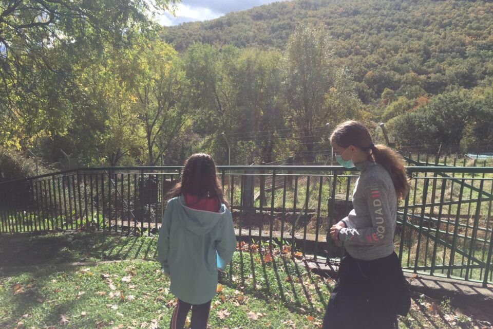 Campamento en el Colladito (Madrid): Últimos días